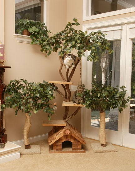 Tree Houses For Cats And Cattery Guests Aylesham Cattery