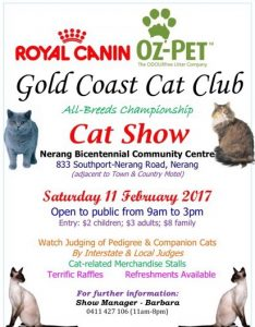 Cat Show at Nerang Bicentennial Centre February 11th